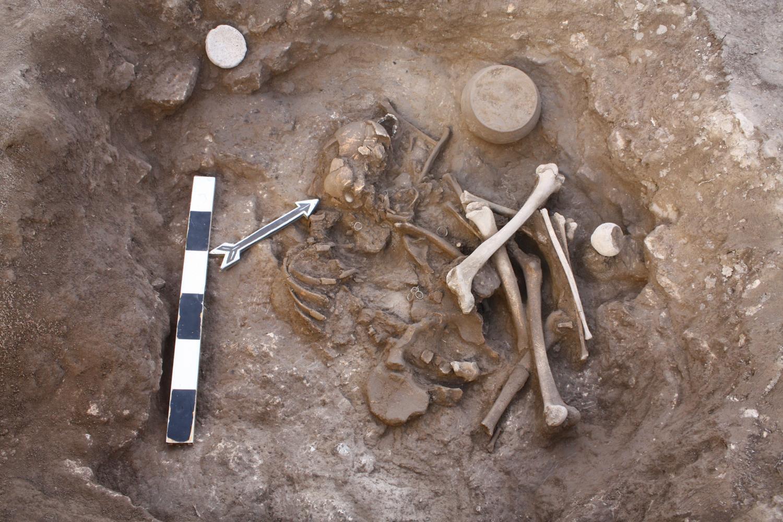 Останки XVII в. до н.э. (средний бронзовый век), использованные в исследовании. Фото: Pavel Avetisyan