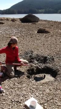 Раскопки прибрежной терассы.  Credit  Nicole Smith, 2019