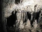 пещера Pestera_Muierii, Румыния