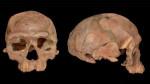 Череп из Джебель-Ирхуд. Источник https://russpain.com/news/science/nauchnaja-revoljucija-ispanskih-uchjonyh-drevnejshih-homo-sapiens-v-afrike/