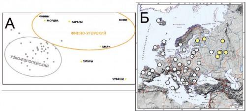 Рис. 3.3. Генетические взаимоотношения популяций, вошедших в «пан-европейский» кластер на рис. 3.2. А. График многомерного шкалирования (стресс=0,138). Популяции разные кластеров показаны разным цветом.  Б. Географическое положение изученных популяций. Цвет каждой популяции такой же, как на графике А.