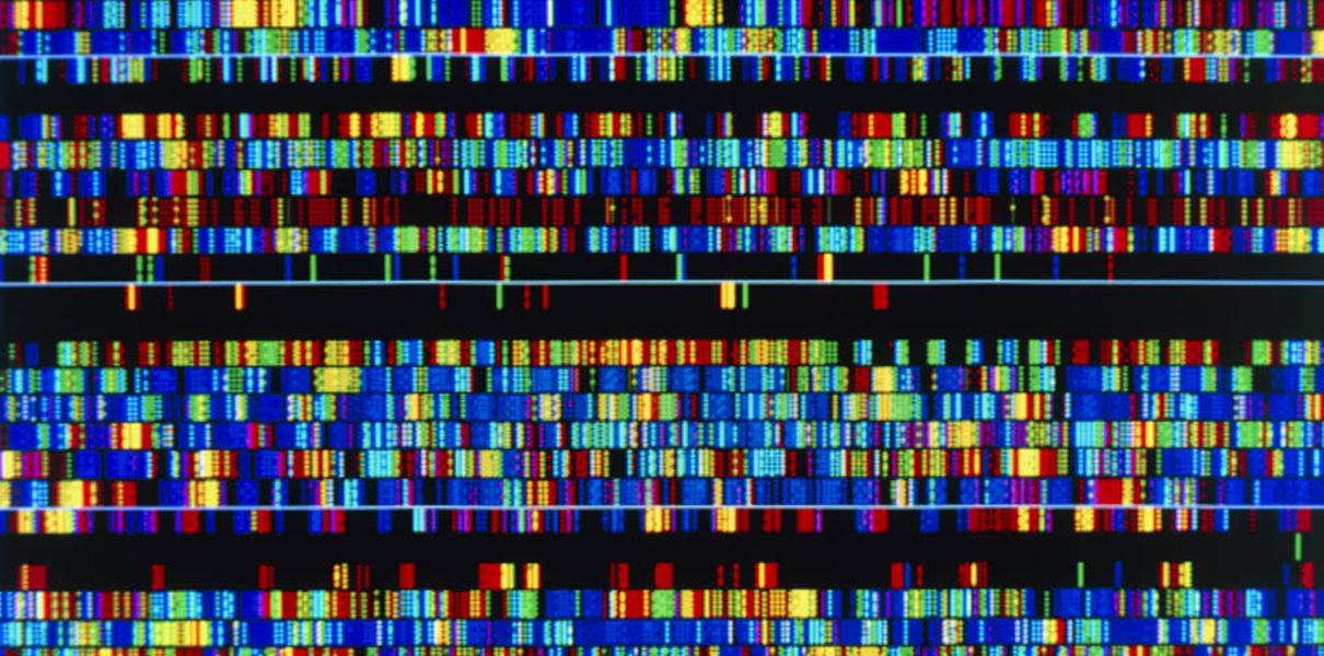 источник: https://hightech.fm/2017/06/23/long-read-genome-sequencing?is_ajax=1