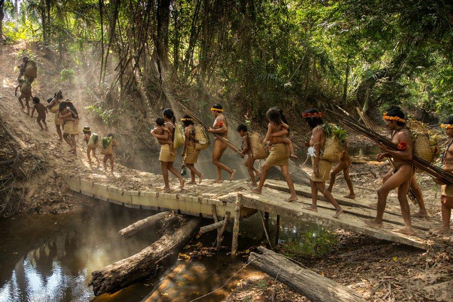 фото с сайта https://nat-geo.ru/nature/strazhi-lesa-nekontaktnye-plemena-amazonki-chast-i-braziliya/