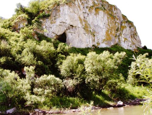Genofond_2020_Chagyrskaya_Cave