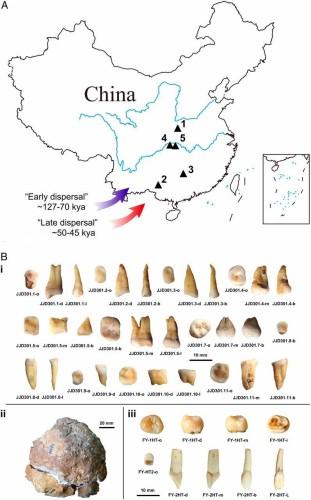 Genofond_2021_Age_of_Modern_Humans_China_Figure_1