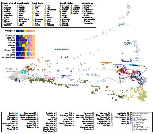 Genofond_2021_Kuzmin_Northeast asia genomes 2021_Fig_2