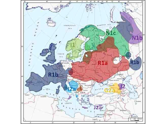 Структура генофонда Европы по Y-хромосоме: «принцип паззлов».