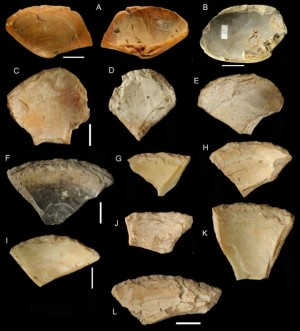Орудия из раковин, найденные в Гротта деи Моссерини  Credit: Villa et al., 2020