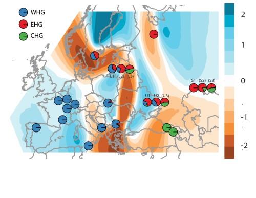 Распределение генетического вклада охотников-собирателей в разных популяциях. Голубым цветом показаны регионы с высокой миграцией и коричневым – с низкой миграцией (см. шкалу справа). Каждый кружок обозначает один или несколько геномов с разным вкладом групп охотников-собирателей: синий – западные, красный – восточные, зеленый – кавказские.
