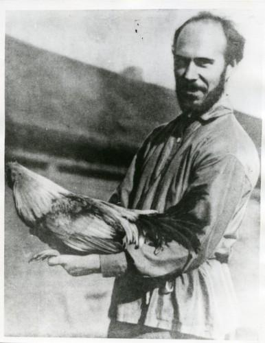 Серебровский