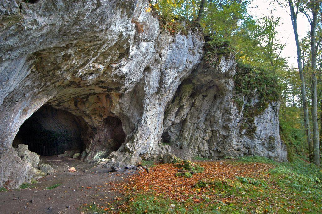 Пещера Холенштайн-Штадель.