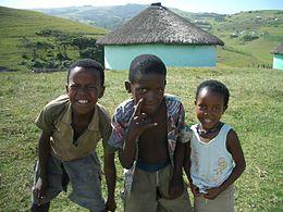 Дети коса (фото https://ru.wikipedia.org)