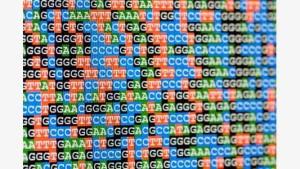human-genome-1