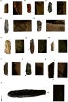 Каменные орудия для сбора урожая (Masclans et al., 2021)