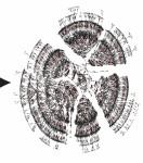 Рисунок из статьи Kaplanis et al.