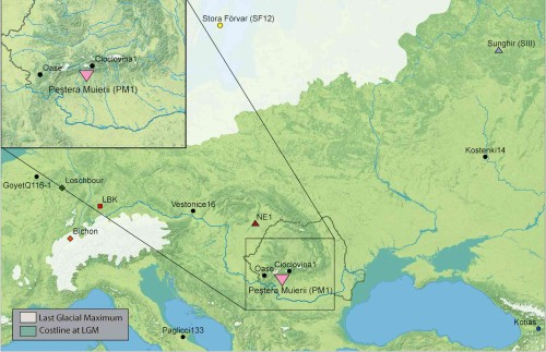 Расположение индивидов европейского раннего верхнего палеолита, геномы которых были изучены.