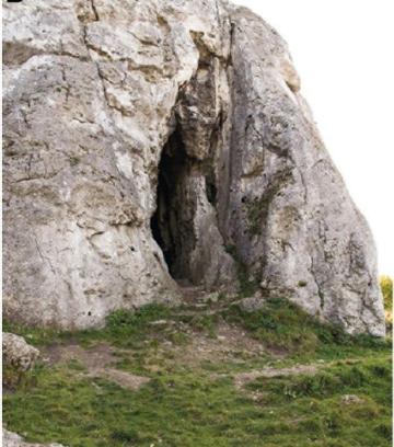 Пещера Стайня. Picin et al, doi: 10.1038/s41598-020-71504-x.