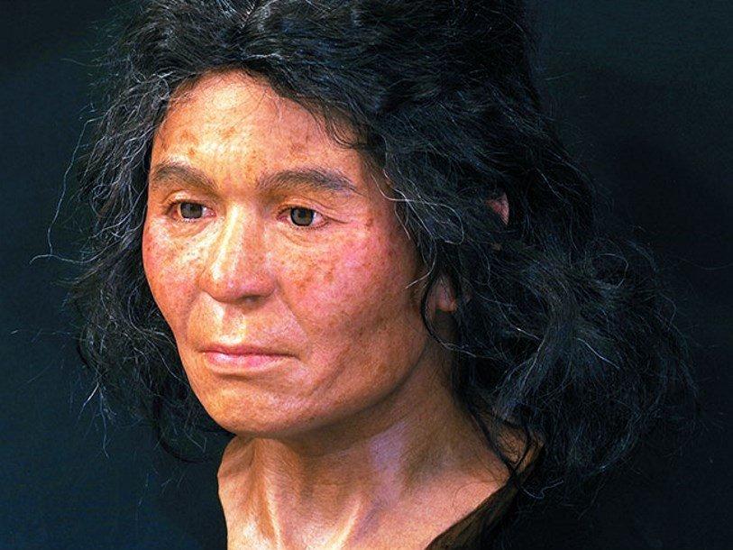 Реконструкция облика женщины на основе строения черепа и анализа генома National Museum of Nature and Science